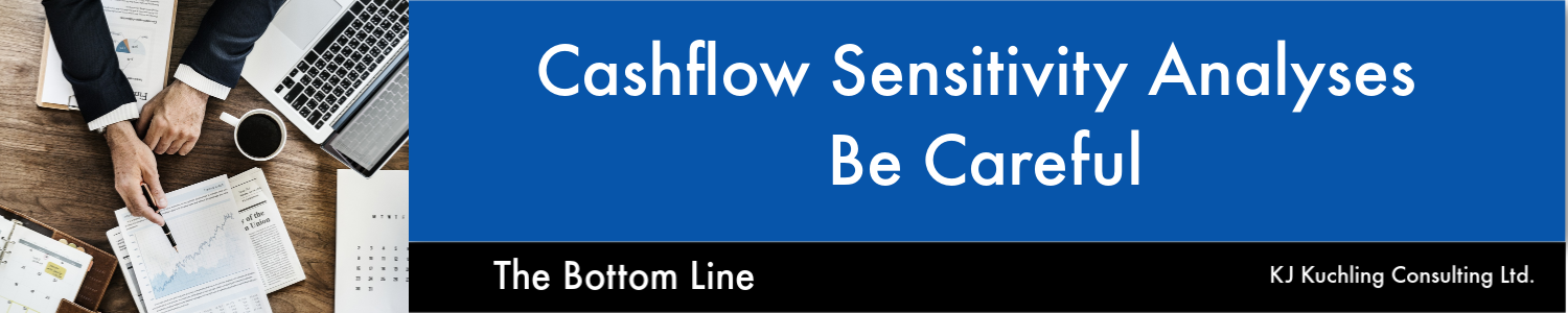 cashflow sensitivity